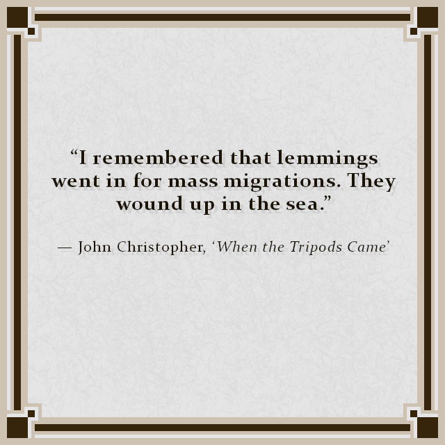"""I remembered that lemmings went in for mass migrations. They wound up in the sea."" — John Christopher, 'When the Tripods Came'"
