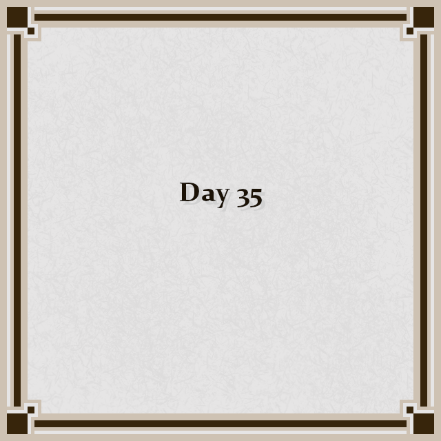Day 35