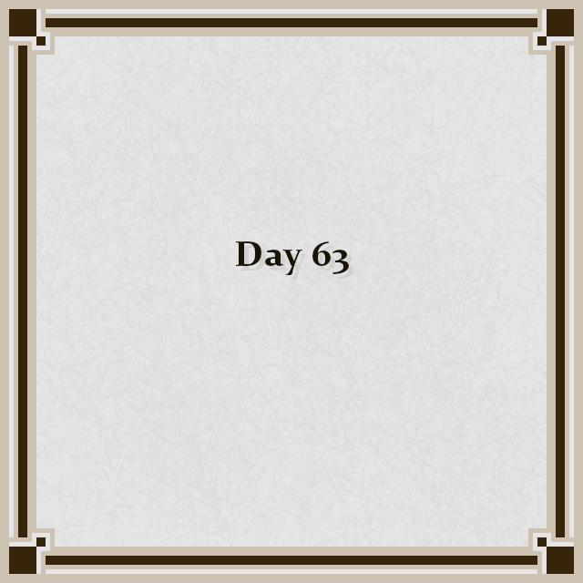 Day 63
