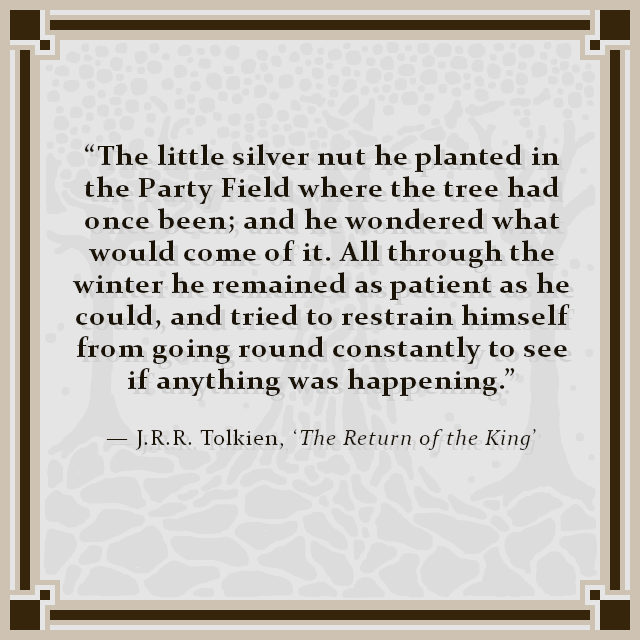 """The little silver nut he planted in the Party Field where the tree had once been; and he wondered what would come of it. All through the winter he remained as patient as he could, and tried to restrain himself from going round constantly to see if anything was happening."" — J.R.R. Tolkien, 'The Return of the King'"