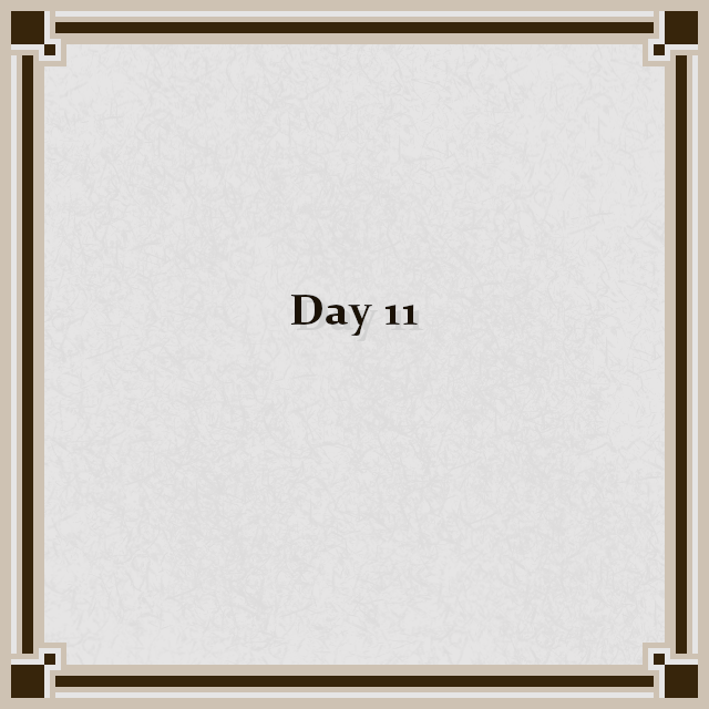 Day 11